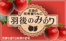 りんご専門通販